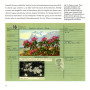 Kunstblätter-Blätterkunst, Seite 68