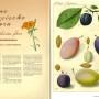 HU Wissen, Ausgabe 7, Seite 112-113, Fotos: Barbara Herrenkind