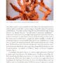 Darwin`s Corals, Seite 21